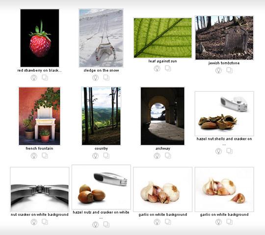 Mých prvních 12 fotek na microstocku